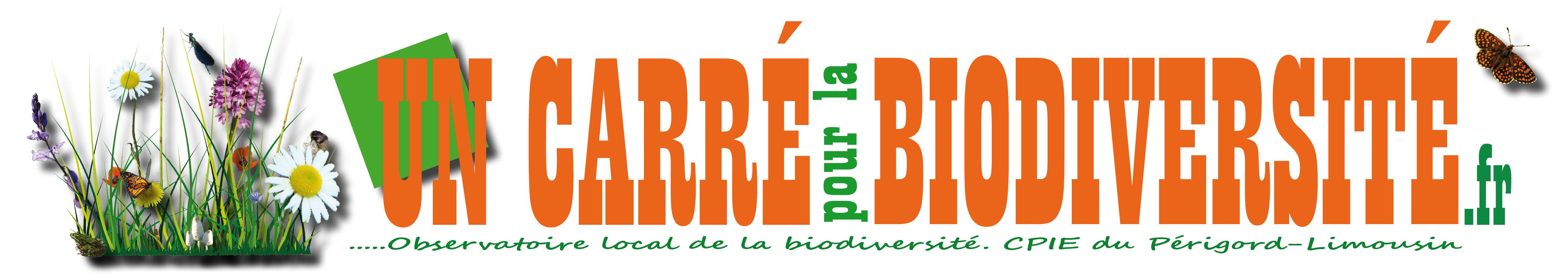 bannière Carré Bio HD 2016