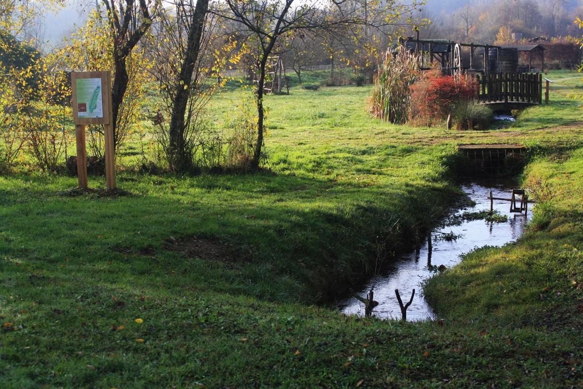 lud'eau vive©CPIE Périgord Limousin (796)