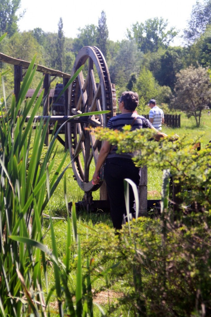 Lud'eau vive CPIE Périgord Limousin Varaignes