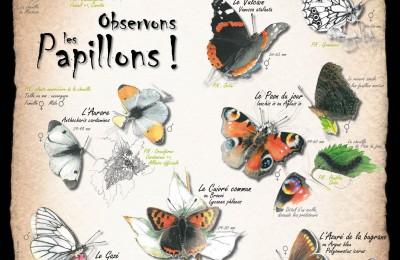 Affiche papillons BD 2016