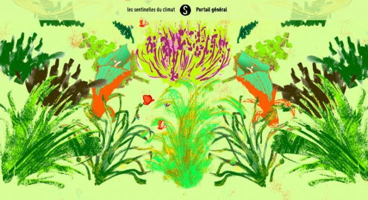 Site Les sentinelles du climat