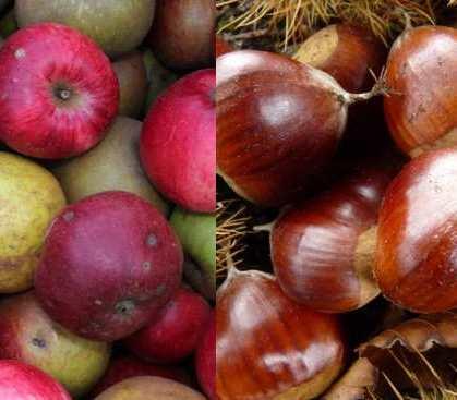 Animation pomme et/ou châtaigne