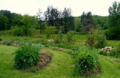 jardin à la Chapelle-Montmoreau