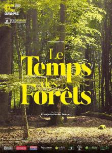 chevêche 2019 Le temps des forêts