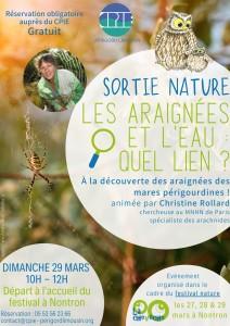 Festival nature_sortie_araignees_dimanche29mars