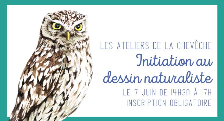 initiation_dessin