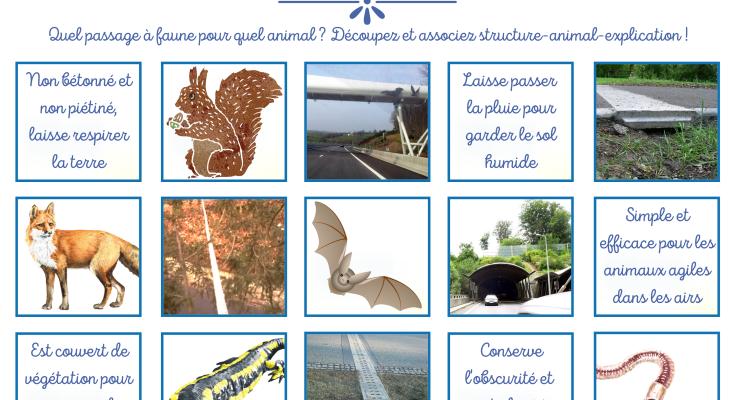 jeu_passages_a_faune