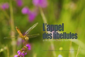 affiche_appel_libellules