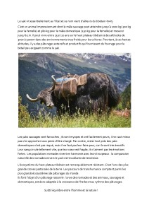 Highland Initiatives_place au yak_p1