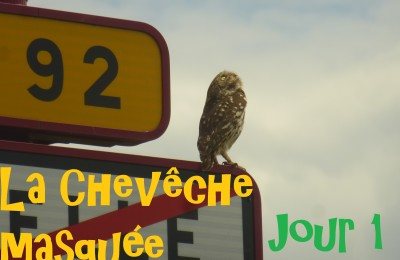 semaine-cheveche_masquee_jour1