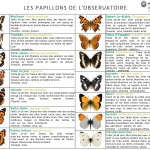 Operation_Papillons_Fiche_identification_page-0001