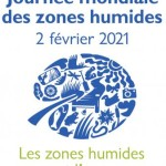 logo_jmzh_2021