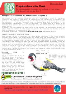 Carre-fev-2021-chardonneret